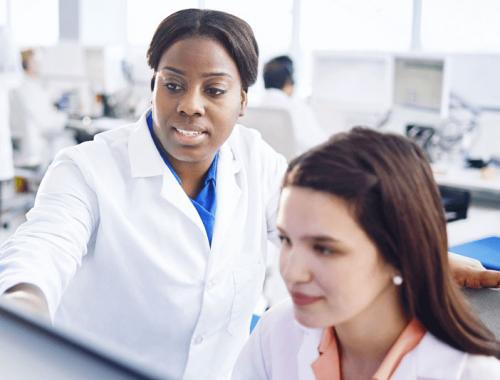 Experienced pharmacists working together on a computer